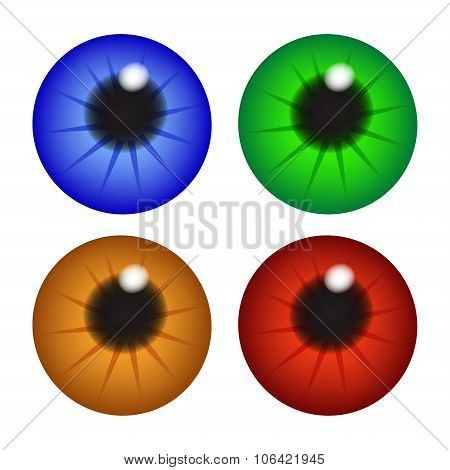 Iris Eye, Pupil, Eyeball . Set Of Realistic Vector Illustration Isolated On White Background.