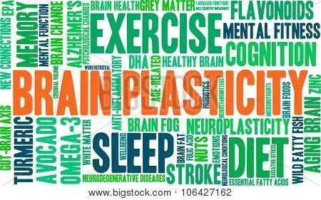Brain Plasticity Word Cloud