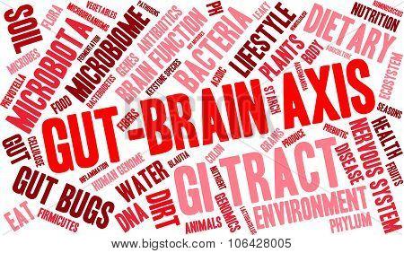 Gut-brain Axis Word Cloud