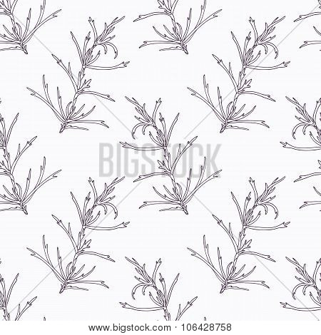 Hand drawn tarragon branch outline seamless pattern