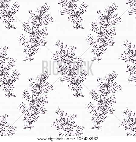 Hand drawn rosemary branch outline seamless pattern