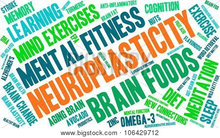 Neuroplasticity Word Cloud