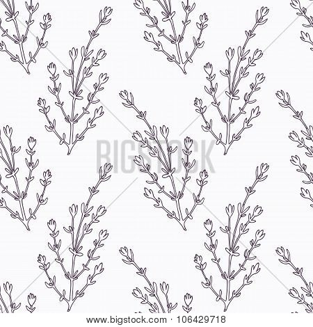 Hand drawn thyme branch outline seamless pattern