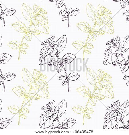 Hand drawn oregano branch stylized black and green seamless pattern