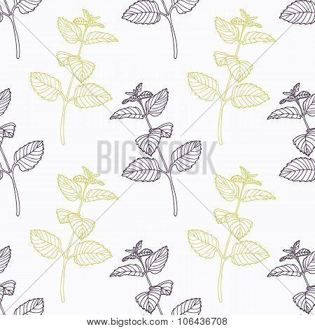 Hand drawn melissa branch stylized black and green seamless pattern