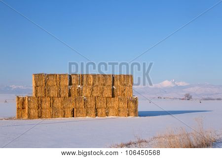 Golden Hay Stacked In A Field With Snow Capped Mountains In The Background