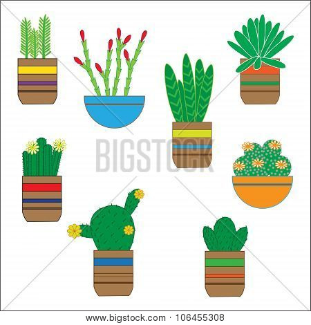 Hand Drawn Succulent Set. Doodle Florals In Pots. Vector Botanical Set With Cute House Interior Plan