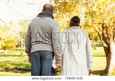 Rear view of senior peaceful couple in parkland