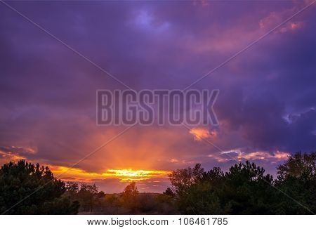Sunset In The Woods With Bulky Colorful Clouds