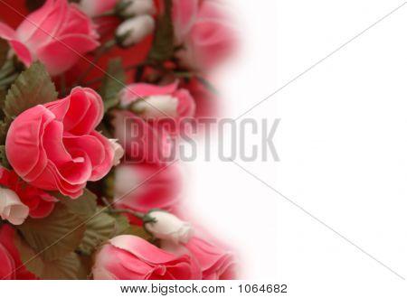 Hintergrund mit Rosen - Verwendung Exemplar für Ihren Text