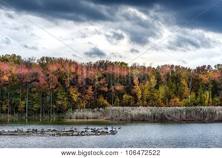 Autumn On A Chesapeake Bay Lake
