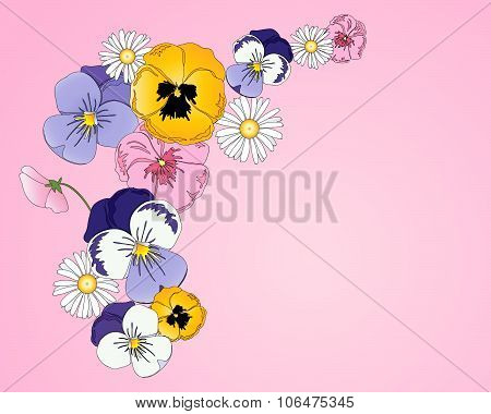 Pansy Greeting