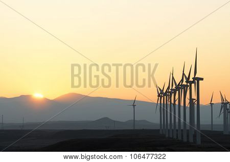 aligned windmills for renowable electric production at sunset, Pozuelo de Aragon, Zaragoza, Aragon, Spain