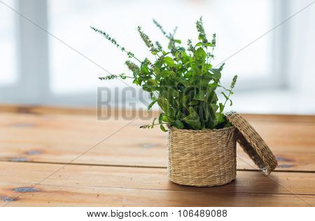 botany, summer, gardening and herbs concept - close up of fresh melissa in wicker basket on wooden table