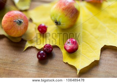 nature, season, autumn and botany concept - close up of autumn leaves, fruits and berries on wooden table