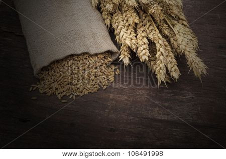 Bag full of wheat and wheat ears