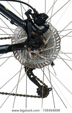 Rear Hydraulic Disk Brake