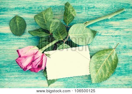 Blank Greeting Card And Dry Roses