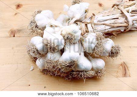 Bunch Of Dried Garlic