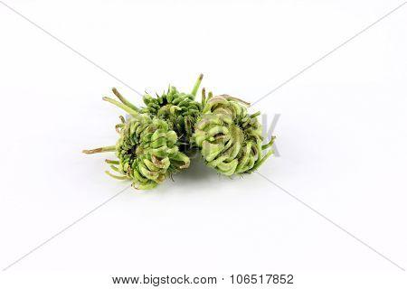 Calendula, Marigold Seeds On White Background