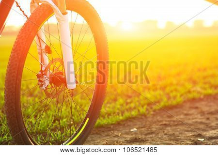 Beautiful close up scene of bicycle at sunset,