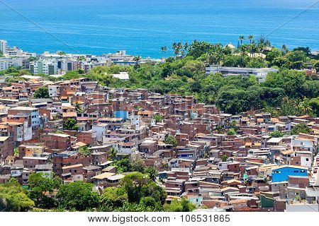 Aerial View Of Favela (shanty Town) In Salvador, Bahia, Brazil