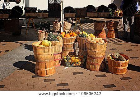 Farmer's Market Pumpkin Harvest