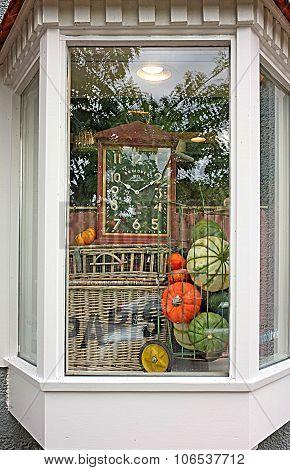 Pumpkin Winter Squash Window Display