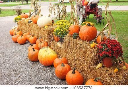 Pumpkin Winter Squash Hay Bale