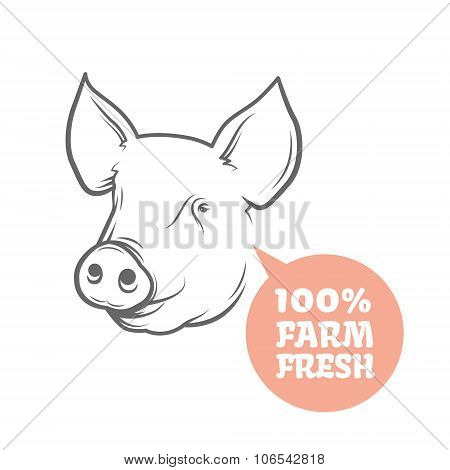 Pig logo design template.
