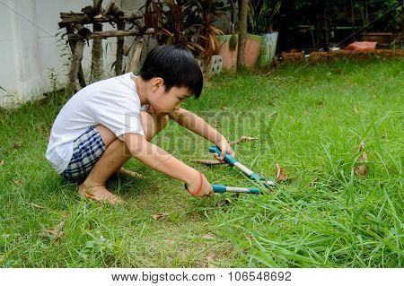 Boy Cutting Grass