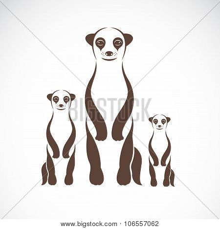 Vector Image Of An Meerkats On White Background