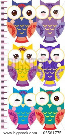Colorful Owls Children Height Meter Wall Sticker, Kids Measure, Growth Chart. Vector