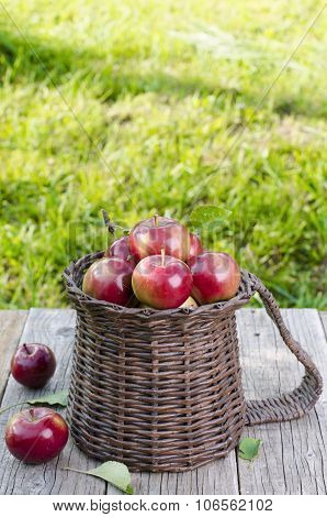 Basket of red apples on a wooden background. Natural background Grass and leaves