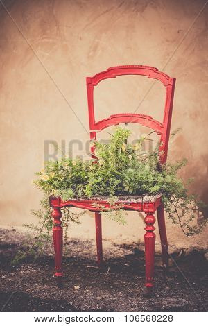 Flowerbed In A Chair As Home Decoration In Rustic Style