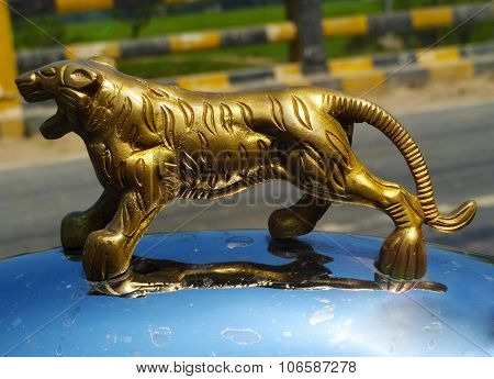 Gold Metal Tiger on Silver Surface