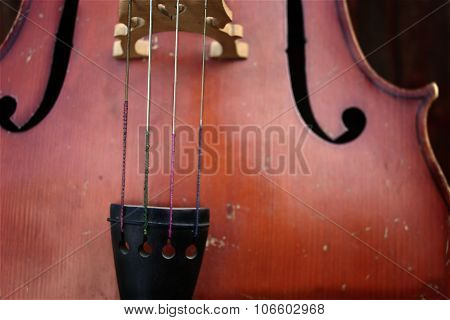 Cello Strings Closeup