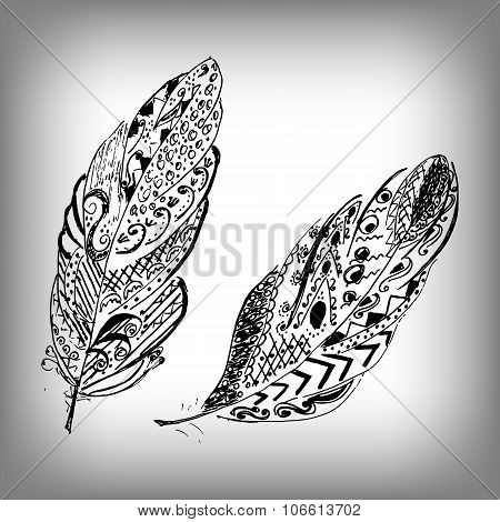 Hand drawn stylized feathers vector collection. Cute zentangle feather for your design. Elements for