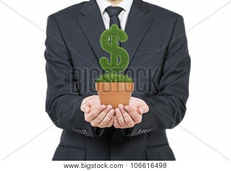 A Person In Formal Suit Holds A Flowerpot With Grass Green Dollar Sign. Isolated On White Background
