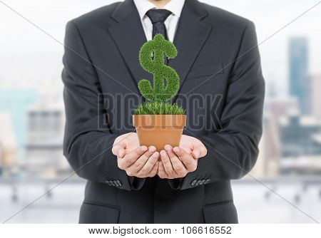 A Person In Formal Suit Holds A Flowerpot With Grass Green Dollar Sign. Office Open Space In Blur On