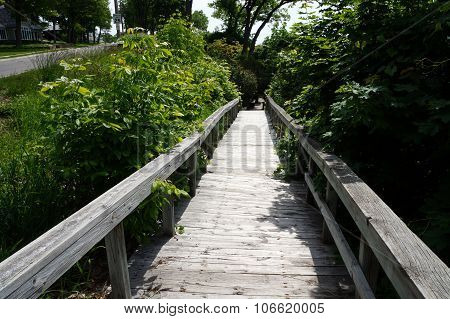 Boardwalk on the Bluff