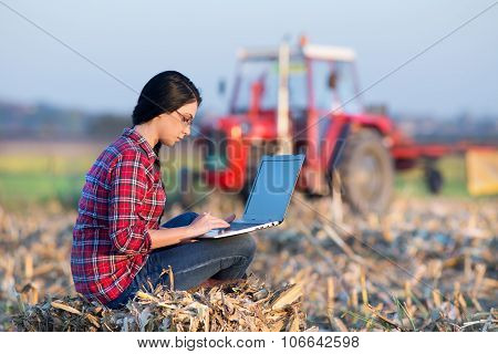 Woman With Laptop In Corn Field