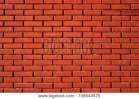 The wall built of bricks.
