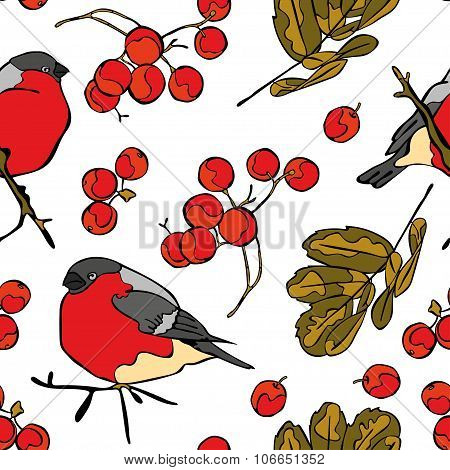 Bullfinches and rowan. Vector seamless pattern (background).