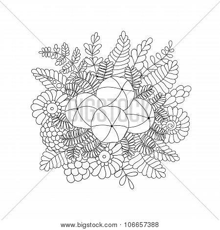 Amla isolated doodle vector image