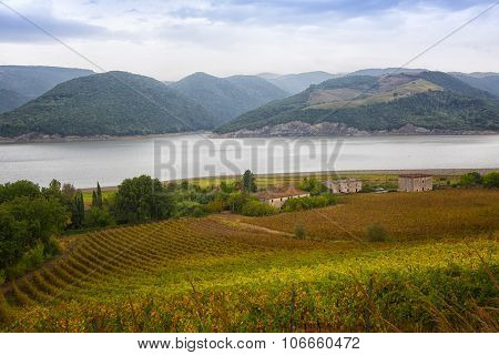 Vineyards And Old Houses On The Bank Of Tiber In Cloudy Weather, Umbria