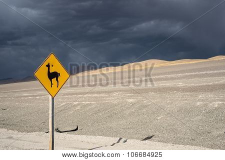 Vicugna (wild South American Camelid) Road Sign, Salinas Grandes, Northern Argentina