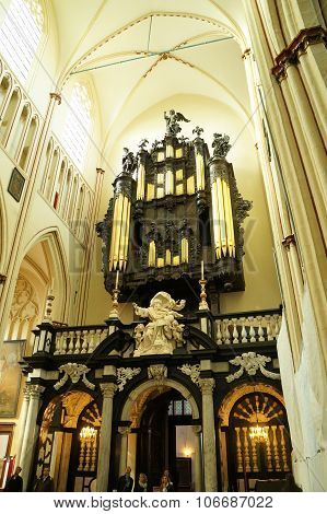 The organ of St. Salvator's Cathedral, Bruges