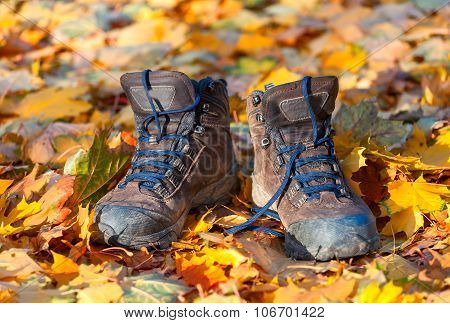 Hiking Boots, Well Worn And Muddy On The Forest Floor