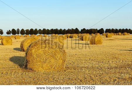 haystacks straw.  cereal